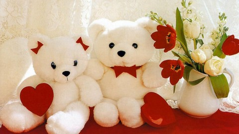 Top 25 Sweet Awesome Lovely Romantic Happy Teddy Day 2014 Shayari, SMS, Quotes, Messages In Hindi, Urdu For Facebook And Whatsapp