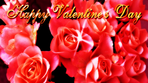 Top 15 Cute Awesome Lovely Romantic Happy Valentine's Day 2014 SMS, Quotes, Messages In Telugu For Facebook And Whatsapp
