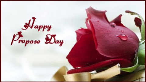 Top 25 Sweet Awesome Romantic Lovely Happy Propose Day 2014 SMS, Quotes, Messages, Shayari In Hindi And Urdu For Facebook And Whatsapp