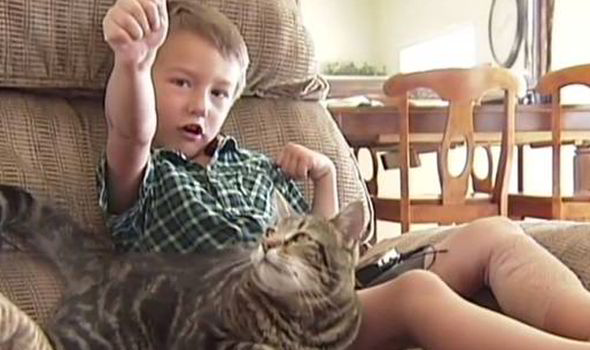 Young Jeremy Triantafilo saved by his pet CAT