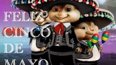 Happy Cinco De Mayo 2014 Pictures, Images, Photos, Wishes, Quotes, Messages, SMS, Greetings, Poems, Cards
