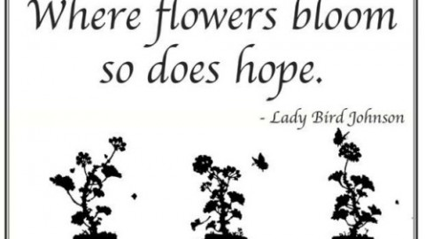 10 Optimistic Quotes On 'Gardening' To Motivate You