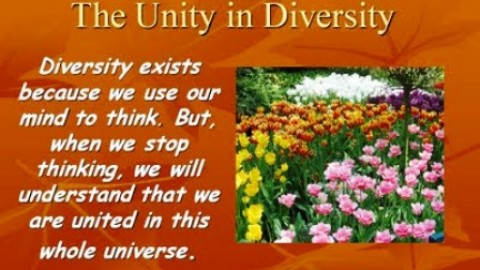 10 Uplifting Quotes on 'Diversity' To Empower You