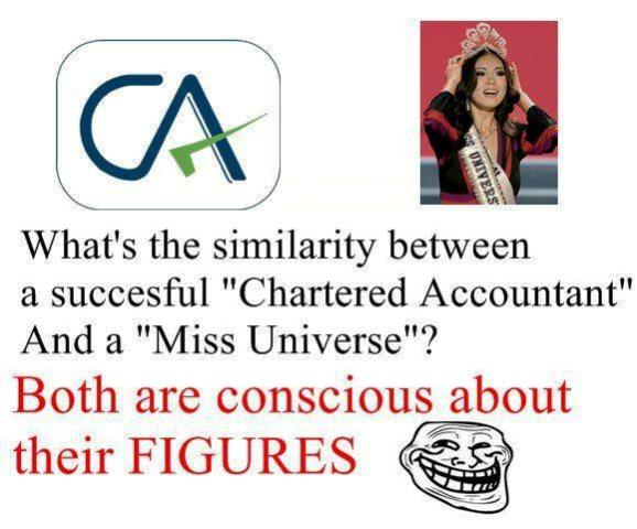 chartered accountant jokes