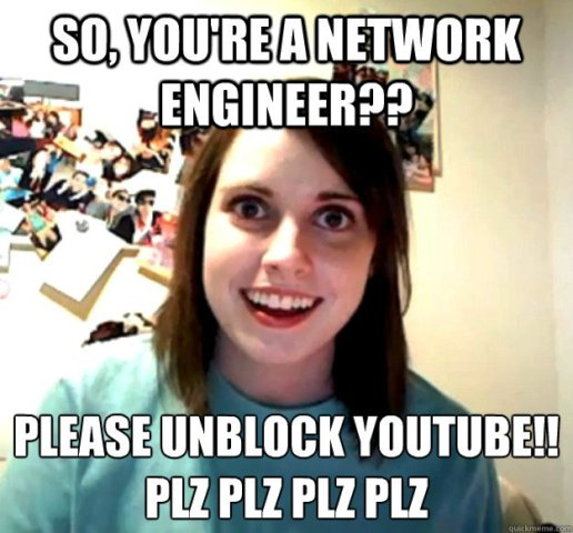 network engineer trolls