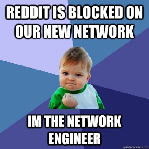 new network engineer