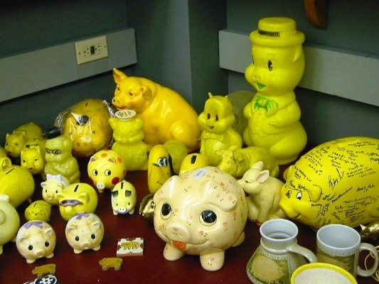 yellow pigs day 1