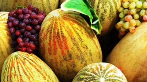 Top 10 Amazingly Beautiful Happy Melon Day 2014 Images, Wallpapers, Photos, Pictures For Facebook And WhatsApp