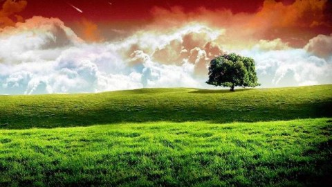 Friday 15 August 2014 Independence Day India Speech in English