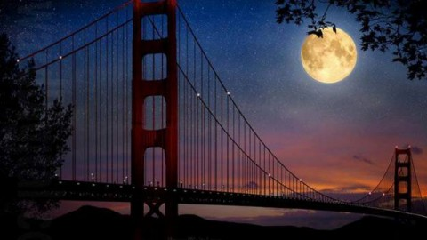 August Full Moon Day 2014 HD Wallpapers, Images, Wishes For Pinterest, Instagram