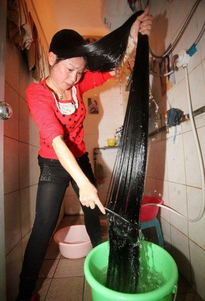 joke-funny-photo-How-to-wash-your-hair-properly