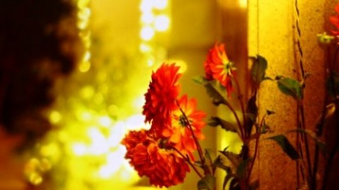 Happy Jamshed Navroz 2014 HD Images, Wallpapers For Whatsapp, Facebook