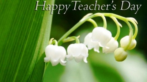 Latest SMS, Wallpapers : Happy Teacher's Day 5th September 2014