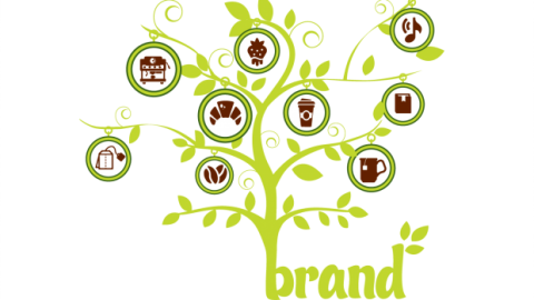 What Is The Meaning of Brand Extension?