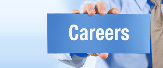The Top 3 Highest Paying Careers in India