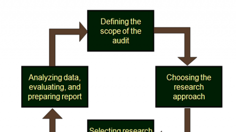 What Is The Scope of Human Resource Audit?