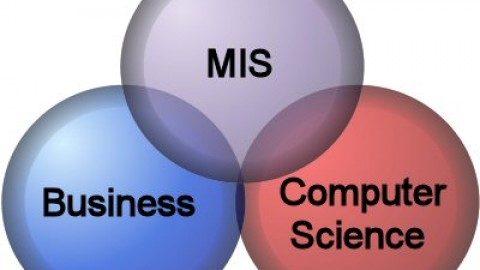 What Is The Importance of MIS?