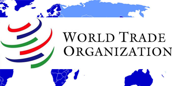 What Are The Functional Councils Under General Council of WTO?