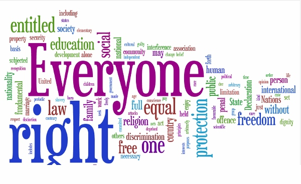 Human Rights Day  (28)
