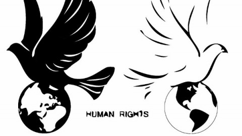 Happy Human Rights Day 2014 HD Images, Wallpapers For Pinterest, Instagram