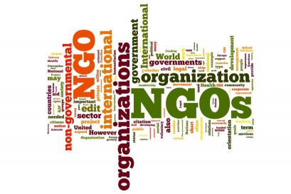 What Is The Meaning of Non-Government Organization?