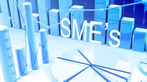 What Are The Functions Meant To Help SMEs?