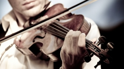 Violin Day 2014 Facebook Photos, WhatsApp Images, Wallpapers, Pictures