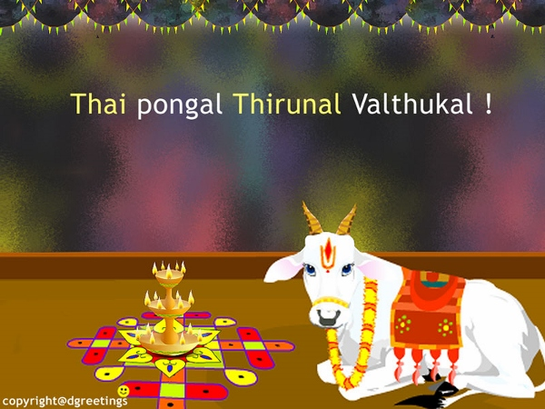 Happy Pongal 2015 Quotes Wishes Greetings Sayings For WhatsApp