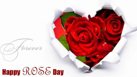 Happy Rose Day 2015 Greetings, Wallpapers Free Download