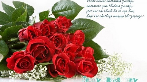 2015 Rose Day HD Images, Wallpapers For WhatsApp, Facebook