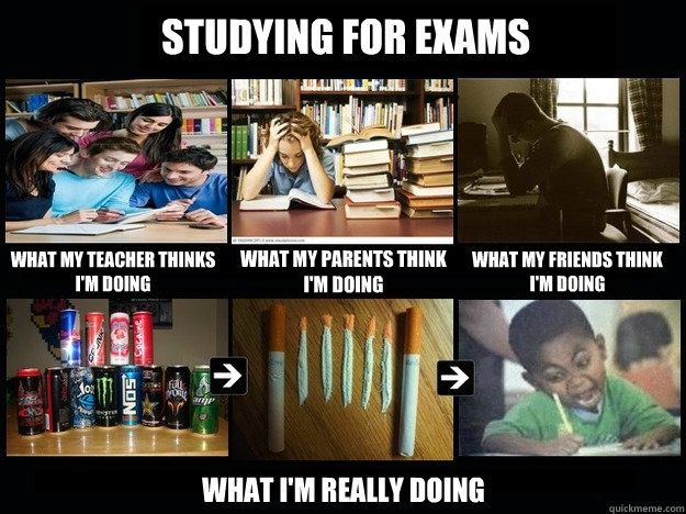 studying for exams