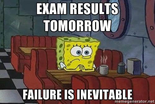 Results Day Memes  (7)