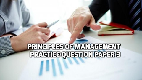 Principles of Management Practice Question Paper 3