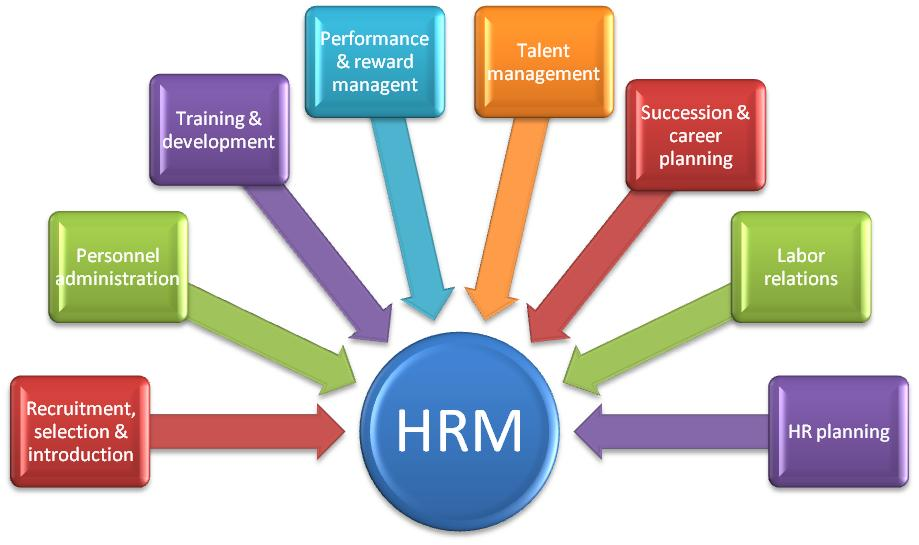 Human Resource Management Concept Testing