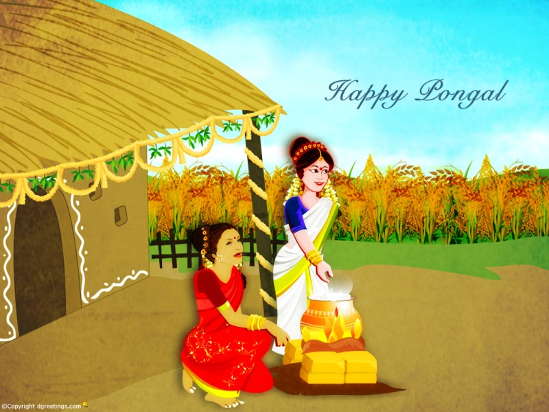 10 Most Awesome Beautiful Happy Pongal 2014 Images, Greetings And Wallpapers