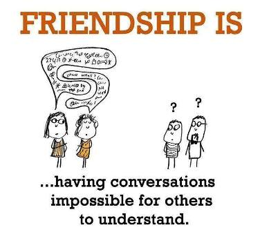 7 Cool Funny Humorous Friendship Status Images Pictures To