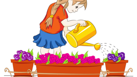 Water a Flower Day 2014 SMS, Wishes, Messages, Greetings In English