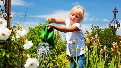 Happy Water a Flower Day 2014 HD Images, Wallpapers, Orkut Scraps, Whatsapp, Facebook