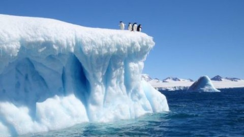9 Interesting Antarctica Facts You Never Knew Before