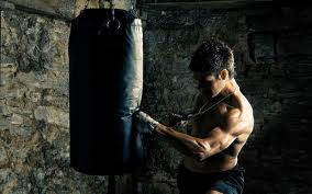kickboxing wp