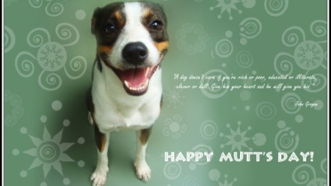 Top 25 Cute Awesome Happy Mutt's Day 2014 Pictures, Photos, Images, Wallpapers