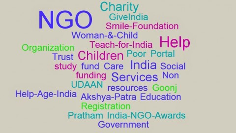 What Do Non-Governmental Organizations Do?