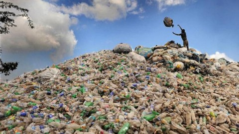 The Residents Of A Colossal Dustbin