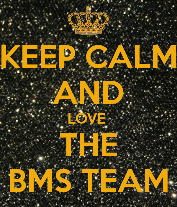 Do You Think You Have It In You To Lead A Team? Well BMS Interns Show You The Way It's Done!