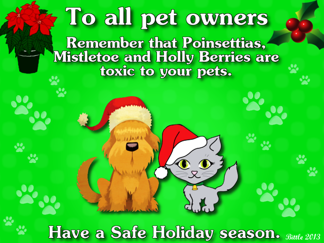 National Pet Memorial Day 2014 HD Images, Pictures, Wallpapers Free Download
