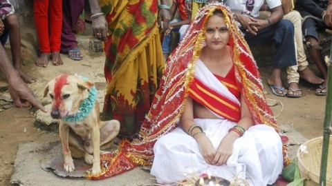 Watch: Woman Marries Dog In Traditional Ceremony In India
