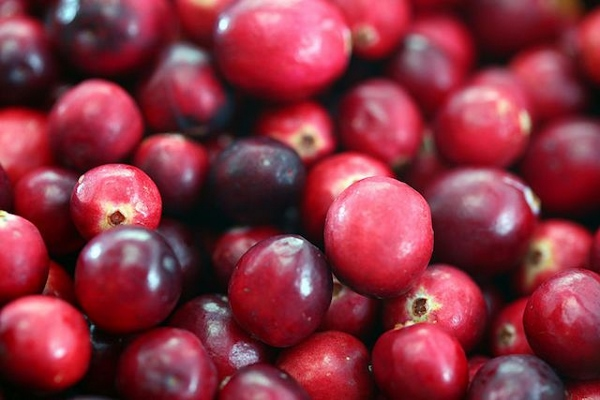 3 Amazing Eat A Cranberry Day Images, Wallpapers, Photos For Facebook, WhatsApp