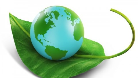 What Is The Meaning of Environmental Theory?