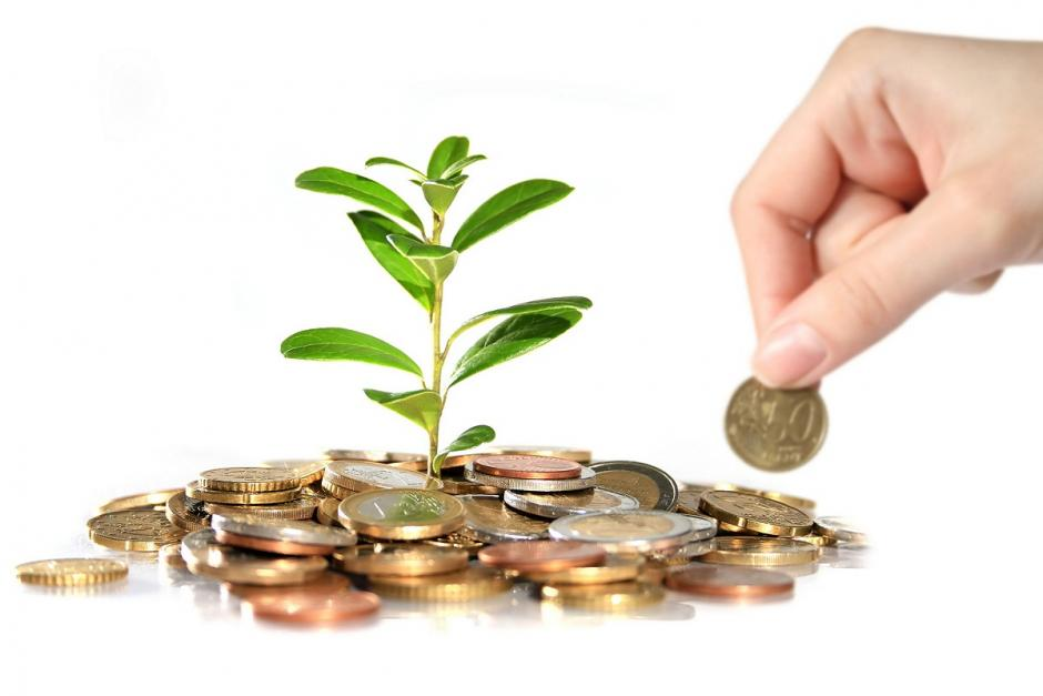 What is The Meaning of Investment Decision Making?