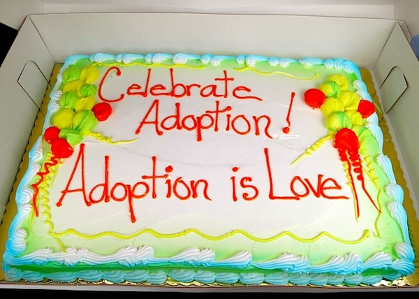 National Adoption Day  (11)